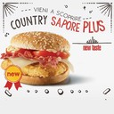 COUNTRY sapore plus 200gr